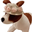 Side view of flower hat on dog