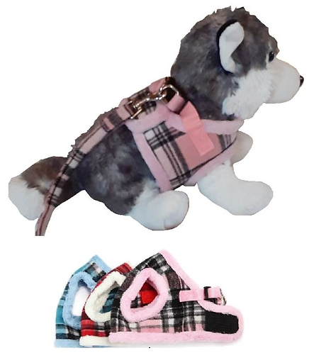 View of harness on dog
