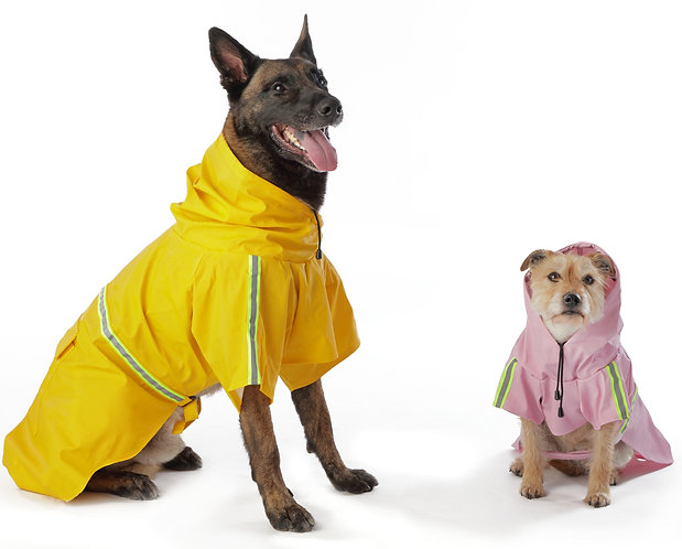 Dee Raincoat for Dogs