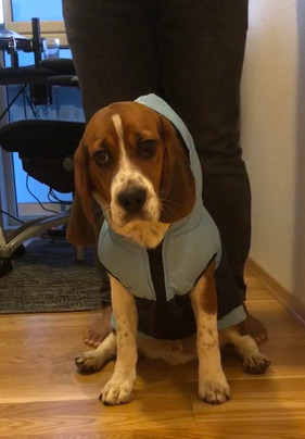 Baxter in his puffer jacket
