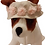Front view of flower hat on dog