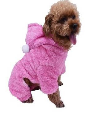 Outfits for Dogs: Just Cute or are they Practical?