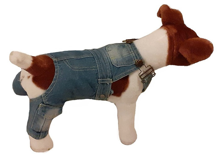 Side view of dungarees on dog