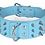 View of blue spike collar