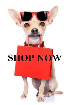SHOP NOW LITTLE DOG WITH BAG.jpg