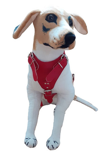 Iceni Leather Dog Harness