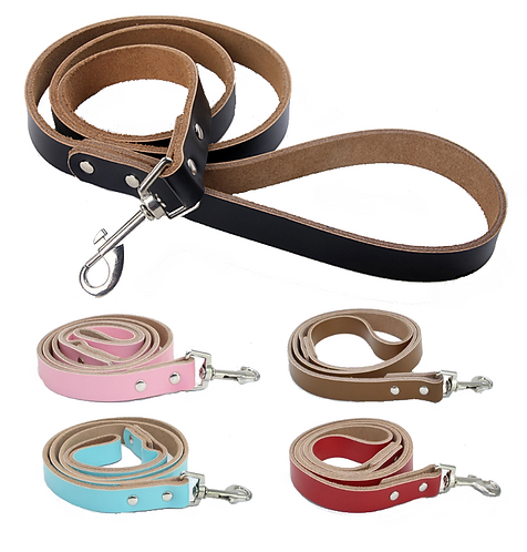 View of leather dog lead