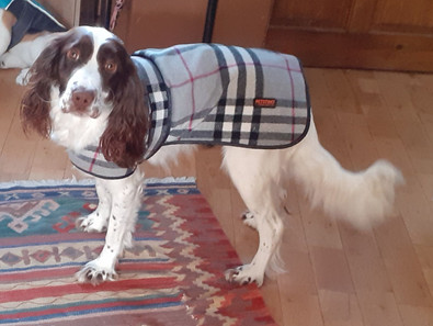 MEG IN HER NEW JACKET.jpeg