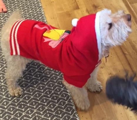 Jingle Bells Christmas Sweater