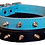 Detail view of blue and black collar spikes