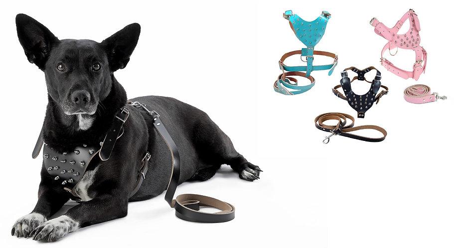 Gladiator Studded Leather Dog Harness