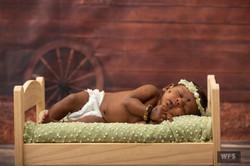 Baby wildframesstudio