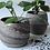 Thumbnail: Plantenpotje