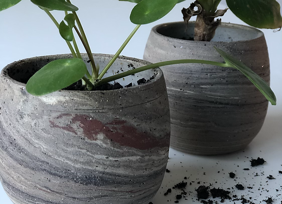 Plantenpotje