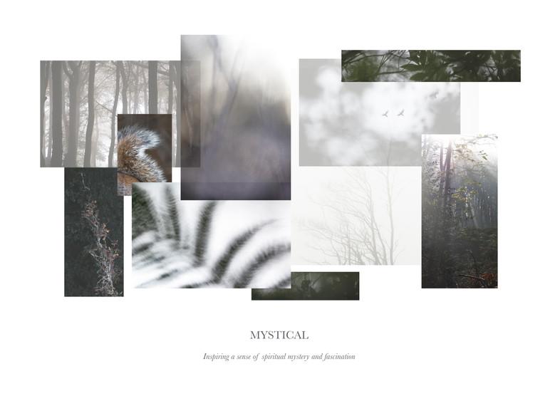 Woodland FINAL Print.jpg