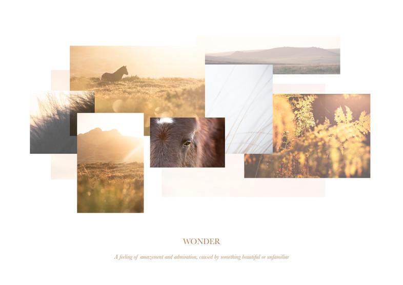 Moorland FINAL Print.jpg