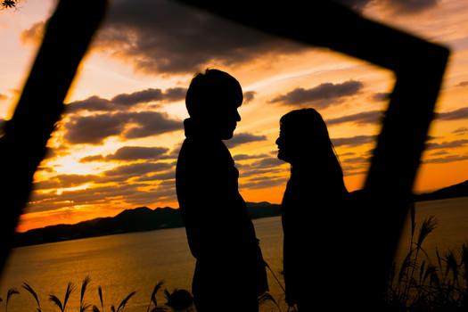 のこのしまアイランドパーク コスモス 夕焼け