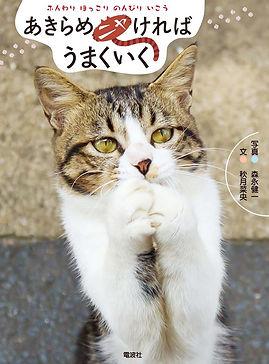 相島のネコ写真 猫写真家 森永健一 ネコカメラマン 猫の島 Ainoshima cat あきらめニャければうまくいく
