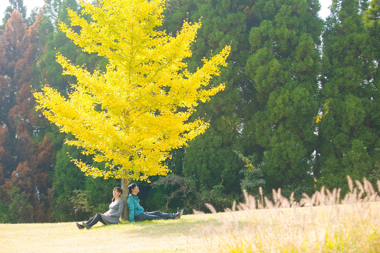 マタニティーフォト 赤ちゃん 東京 横浜 福岡 熊本 福岡結婚写真
