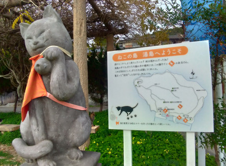 How to get to Cat Island Yushima Island in Kumamoto.