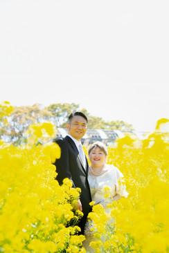 のこのしまアイランドパーク 桜 菜の花 能古島 福岡 | Feel So High! 森永健一Photography | 日本