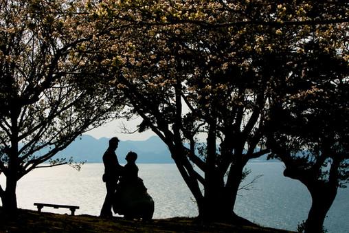 のこのしまアイランドパーク 桜 菜の花 能古島 福岡   Feel So High! 森永健一Photography   日本