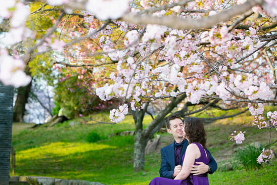 舞鶴公園 桜  sakura  福岡 福岡結婚写真 前撮りロケーションフォト デートフォト エンゲージメントフォト pre-wedding fukuoka sakura ブライダルカメラマン森永健一 from Australia