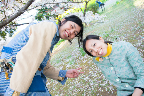 のこのしまアイランドパーク 桜 菜の花 福岡