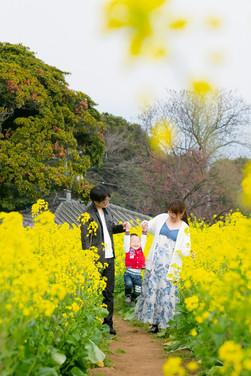 のこのしま アイランドパーク 能古島 菜の花 桜 前撮りロケーションフォト 家族写真 ファミリーフォト モリケン 森永健一 出張撮影 福岡