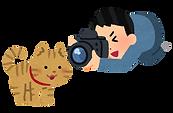 camera_cat.png