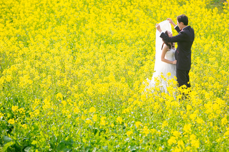 pre wedding in Fukuoka JapanMRKN1731
