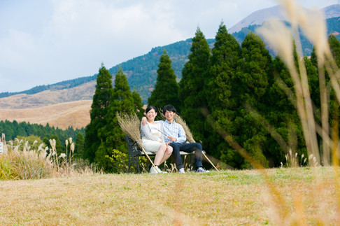葉祥明絵本美術館 高森殿の杉 阿蘇 ラピュタの道 熊本