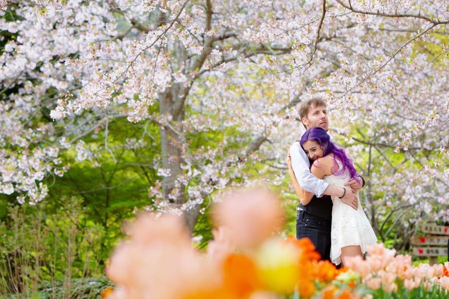 白野江植物公園 北九州 福岡 桜 | Feel So High! 森永健一Photography | 日本