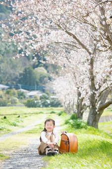 新入学 菜の花 桜 前撮りロケーションフォト 家族写真 ファミリーフォト モリケン 森永健一 出張撮影 糸島 福岡