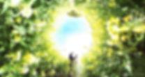thetaplus_20190405063046153のコピー.jpg
