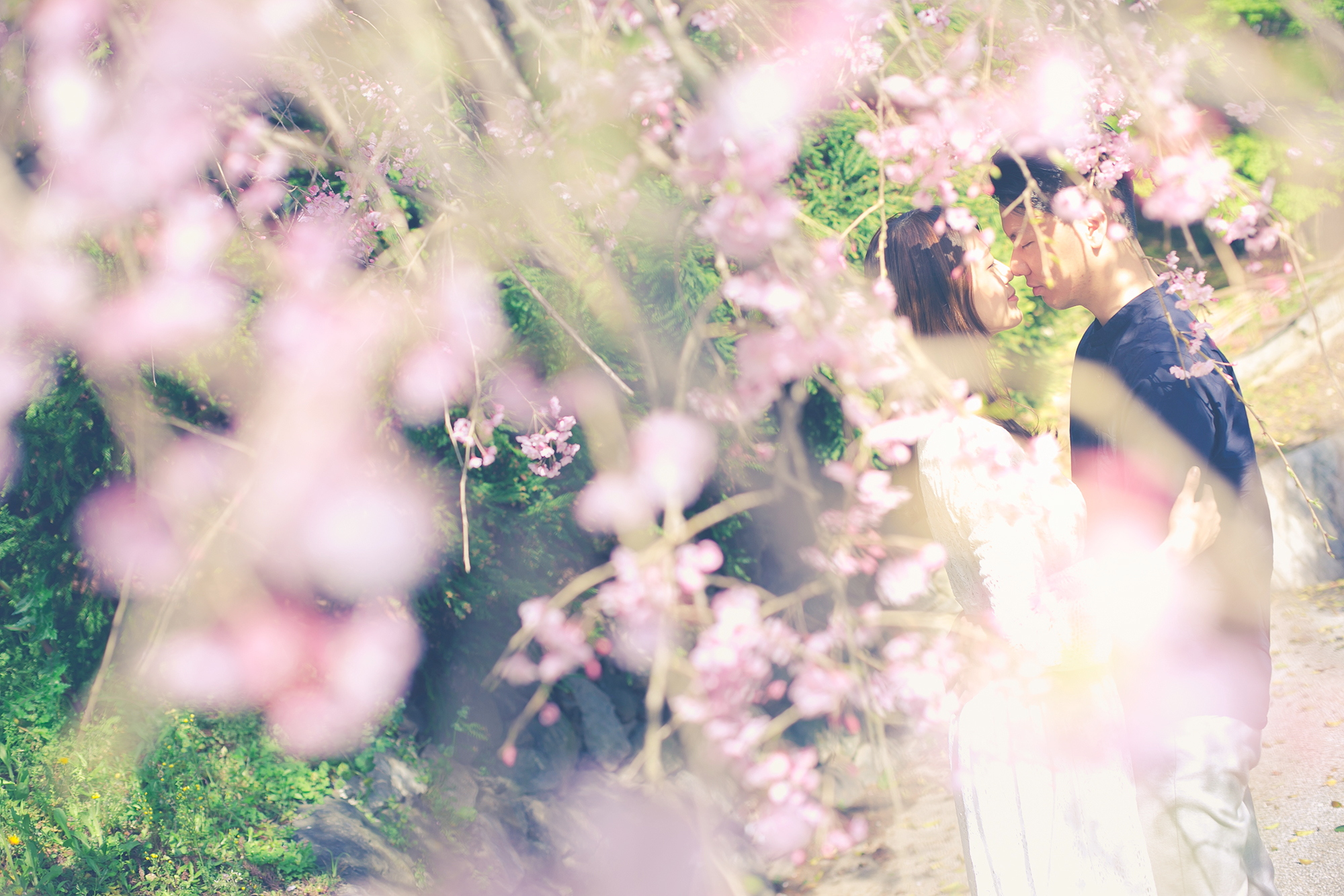 prewedding_fukuoka_moriken_4561