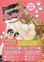 ねこがすき展、うちのねこ展 猫写真家 森永健一 猫写真展示イベント 全国開催