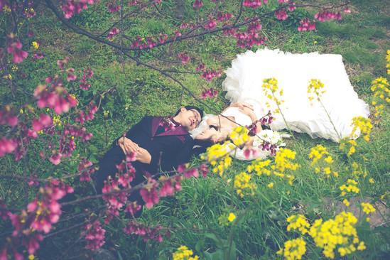 楽水園 のこのしまアイランドパーク 菜の花&桜 夕焼け 福岡