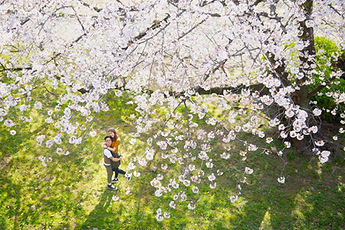 fukuoka_prewedding4262.JPG