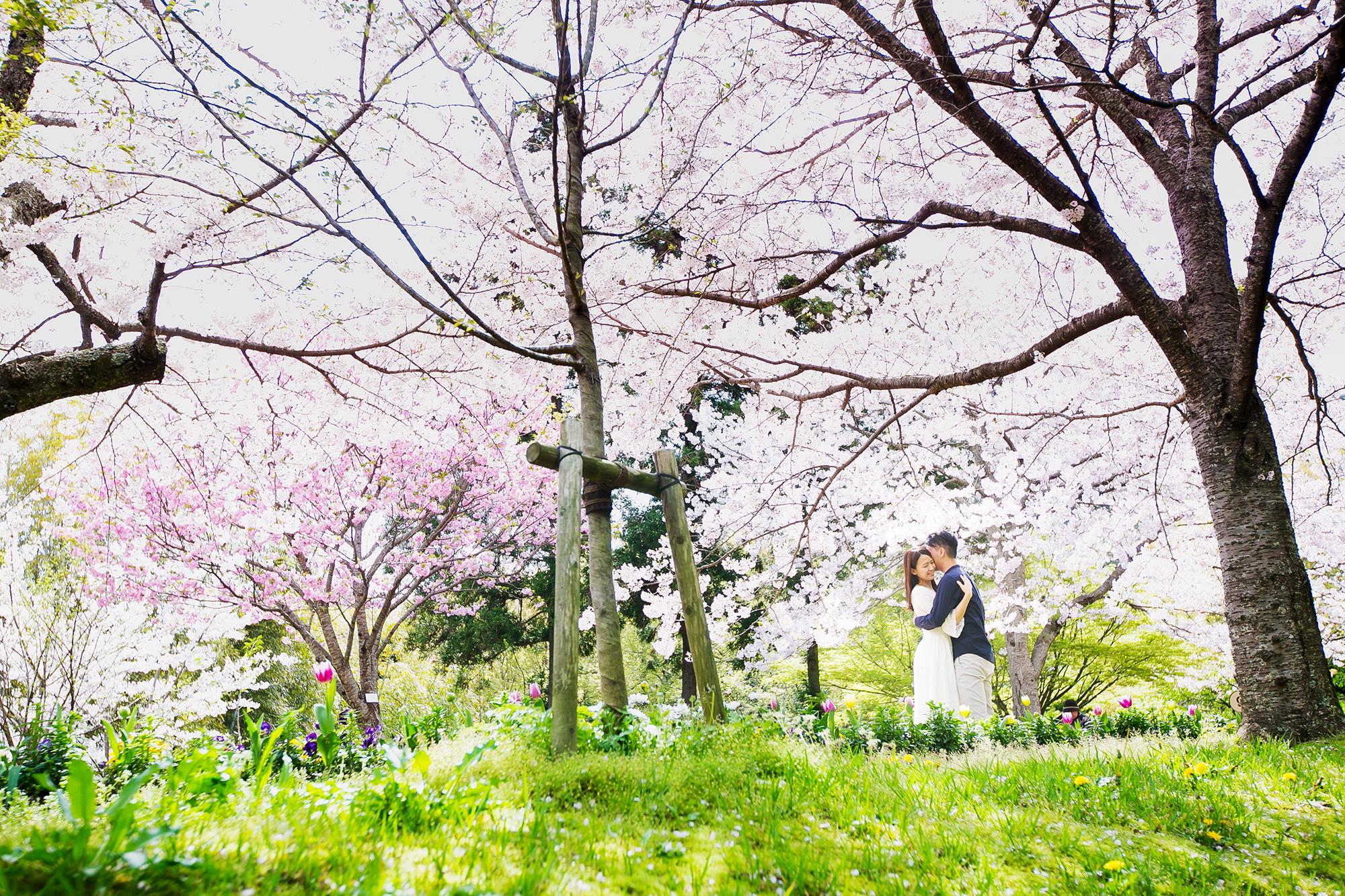 prewedding_fukuoka_moriken_4560