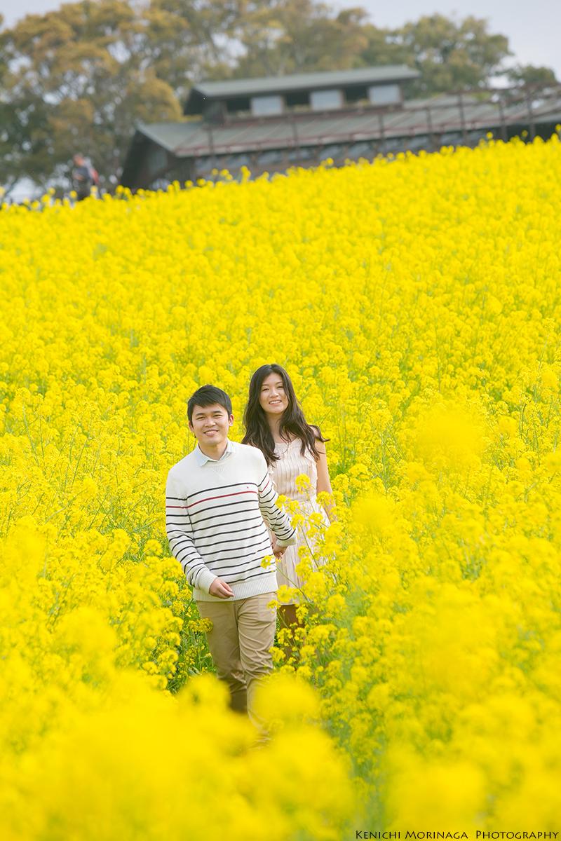 pre wedding photo with sakura