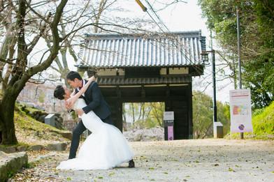 舞鶴公園 百道浜海浜公園 福岡