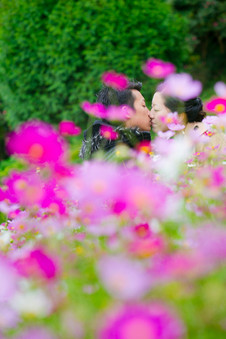 のこのしまアイランドパーク・熊本・福岡