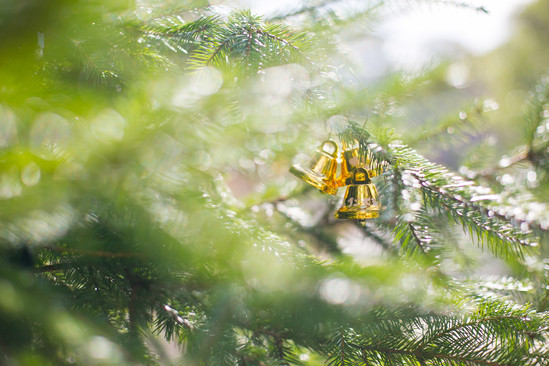 赤坂ルアンジェ教会 ラ・ロシェル 福岡結婚写真 ブライダルカメラマン森永健一