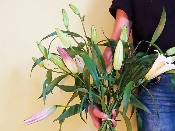 Lirios Omnivia Flowers