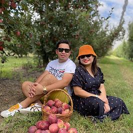 apple picking nicoletti orchards