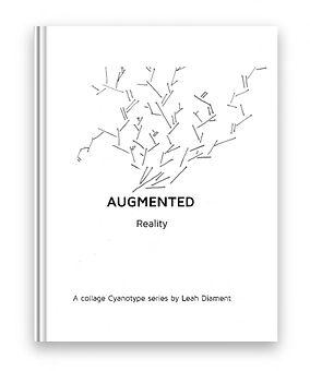 book cover copy.jpf