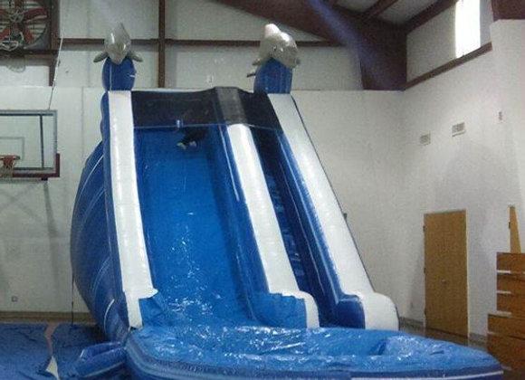 20 Ft Dolphin Marble Splash (Pool)
