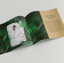 brochure page-2,3.jpg