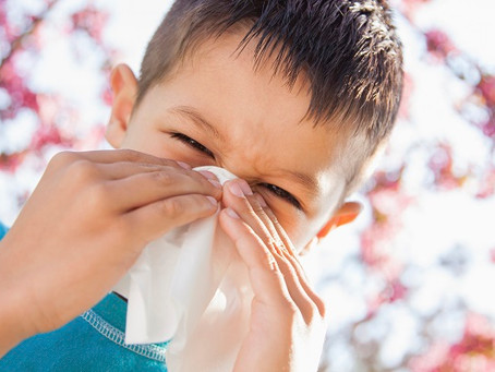 34 ways to avoid seasonal allergens!